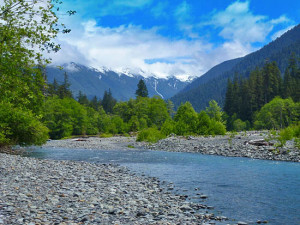 A picture of a spot on the Hoh river that I did not take.